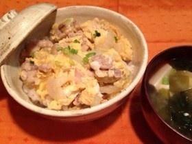 ランチ、お夜食に 白菜入り簡単親子丼