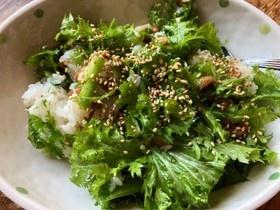 納豆とわさび菜のサラダご飯
