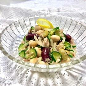 大豆とシーチキンの健康サラダ